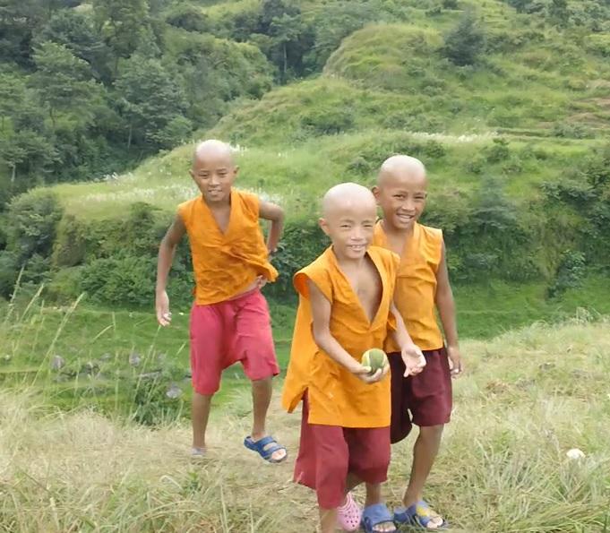 Pema Ts'al Baby Monks