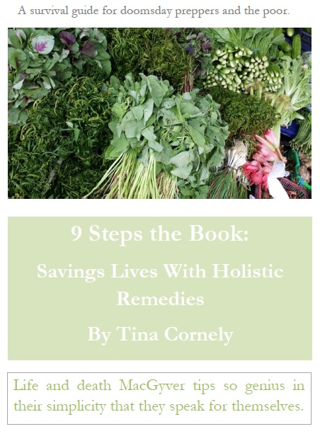9 Steps the Book